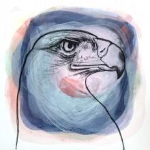 Profile, eagle