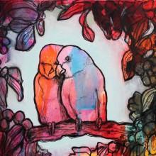 Papegøyekos